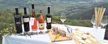 Vinsko – gastronomski safari